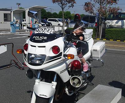 ふれあい2015-2
