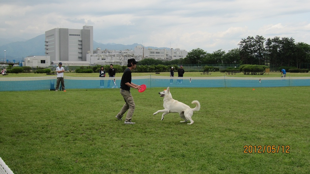 K9 寒川5月12日