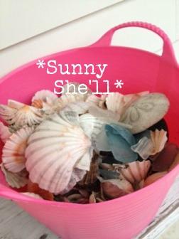 beach62120122.jpg