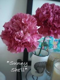 flower112013.jpg