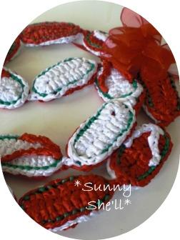 slipper29172012.jpg