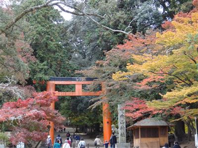 手向山神社