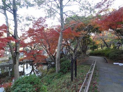 大山公園4