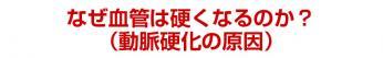 midashi_15.jpg