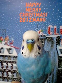 2012年上様クリスマスカード