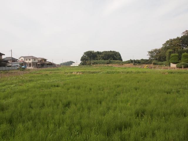 坂東市内野山周辺を。