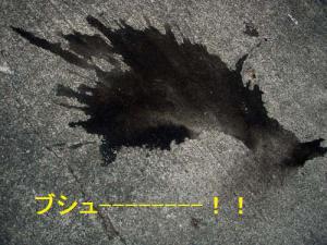 201209220013.jpg
