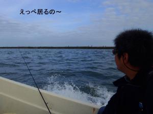 P70804951.jpg