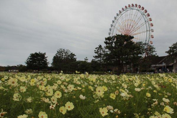 20121017_24.jpg