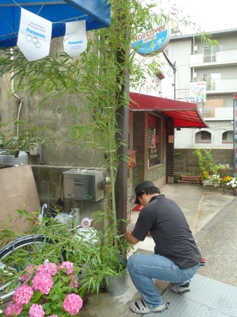 西村さんにいただいた七夕の笹