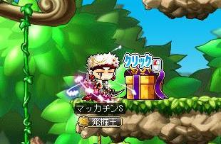 Maple10665a.jpg