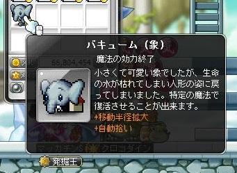 Maple12512a.jpg