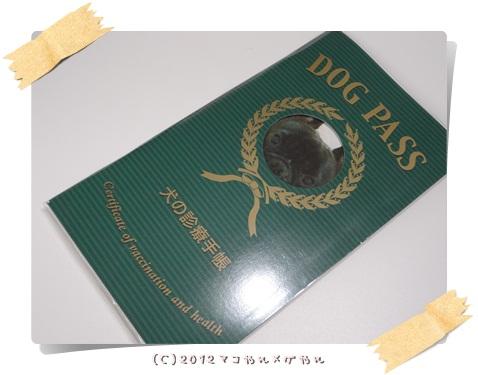 DOGPASS1.jpg