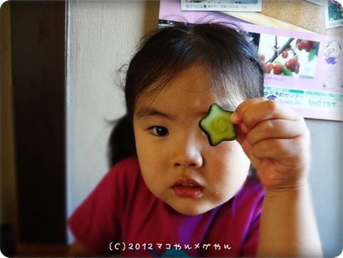 akitabi_hajimari12.jpg