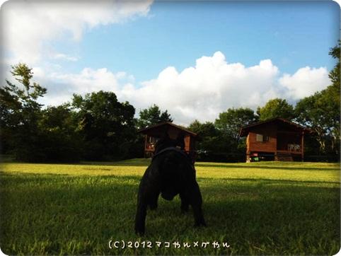 akitabi_hajimari18.jpg