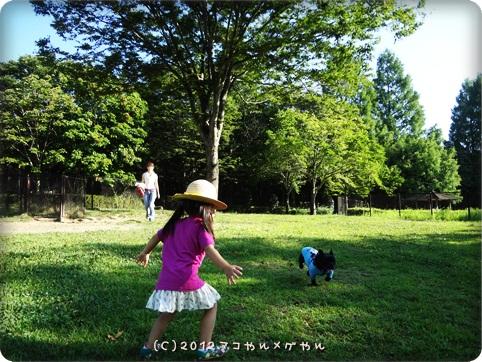 akitabi_hajimari34.jpg