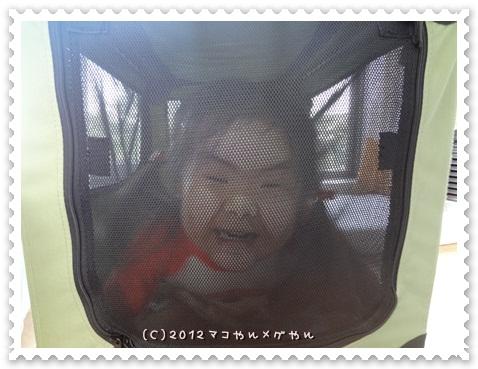 areyakoreya10.jpg