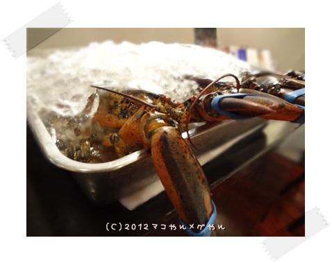 beerfrozen1.jpg