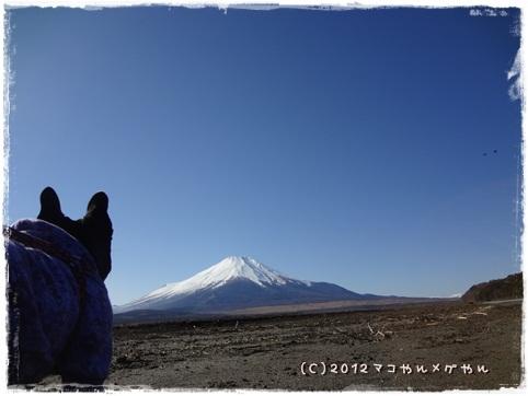 bifuji4.jpg