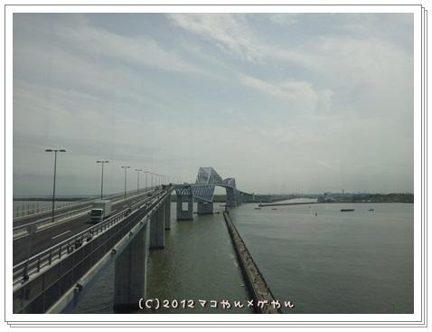 gatebridge6.jpg