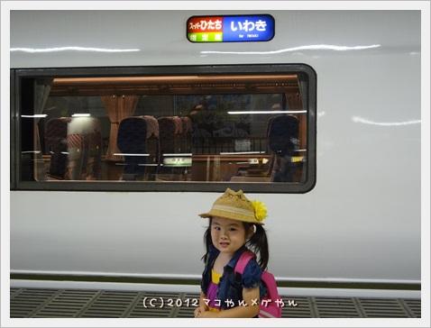 hahakodekisei5.jpg