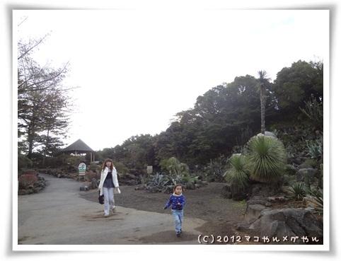 itoniikunara17.jpg
