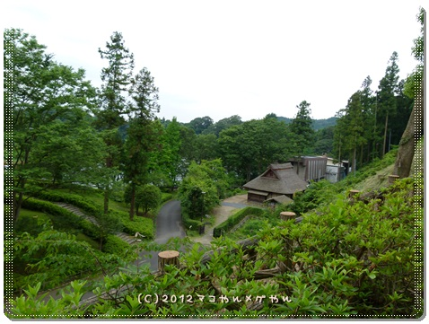 kawaasobi1.jpg