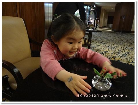kisei2012GW4.jpg