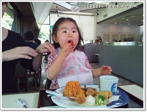 kisei2012gwk17.jpg