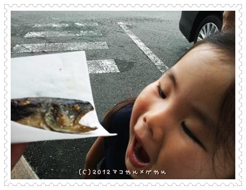 kuroyagi18.jpg
