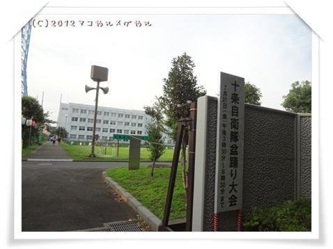 natumaturi20121.jpg