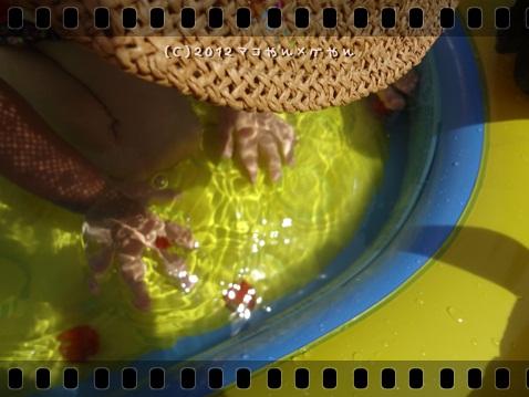 pool201214.jpg
