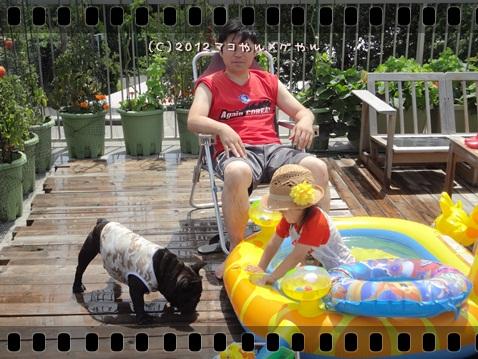 pool20127.jpg