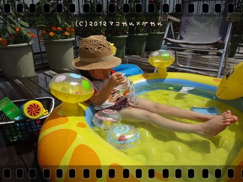pool20128.jpg