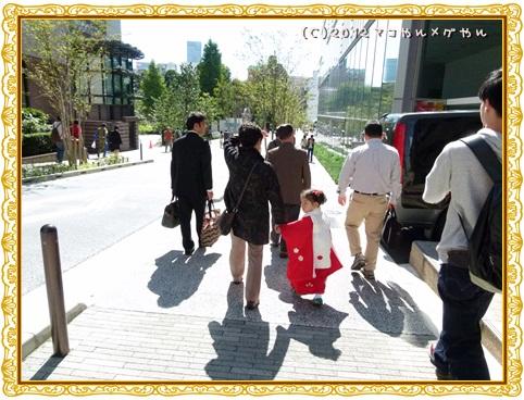 shichigosan13.jpg