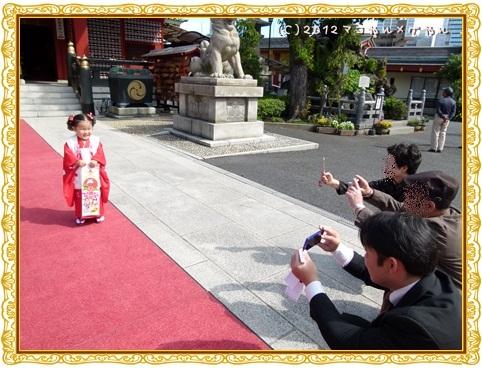shichigosan17.jpg