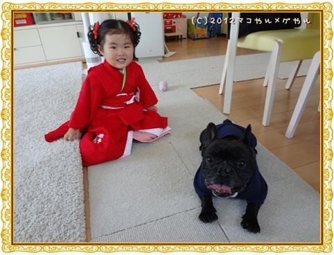 shichigosan19.jpg
