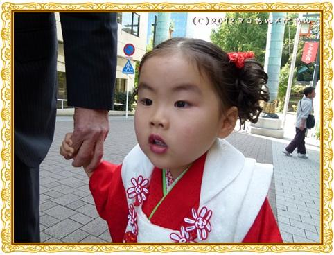shichigosan7.jpg
