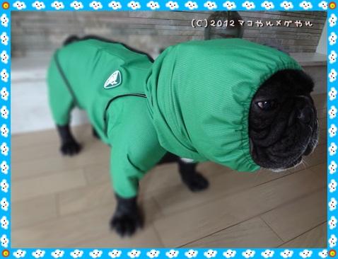 wakuwakukappa3_20120614225809.jpg