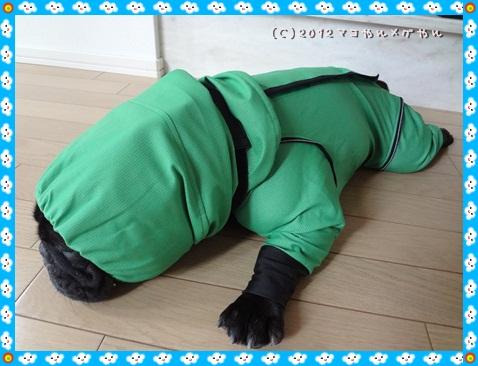 wakuwakukappa5_20120614225808.jpg