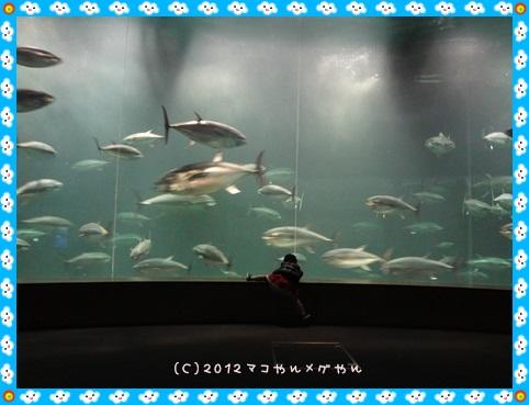 yakubinikasai8.jpg