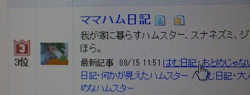P8161296.jpg