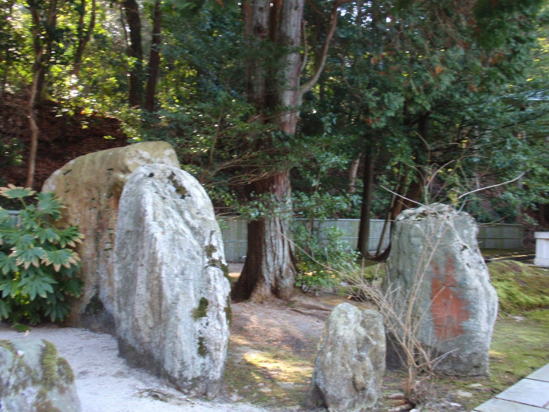 善能寺・庭園3