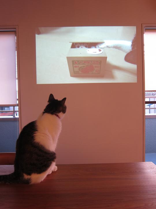 mame_projector2.jpg