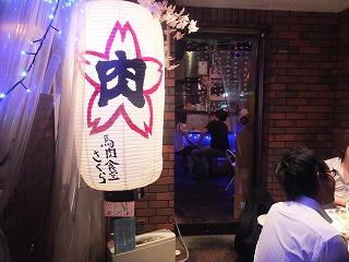 nakano-sakura1.jpg