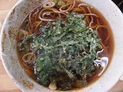 saginomiya-musashino17.jpg