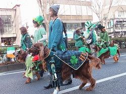 tokyo-st-patricks-parade5.jpg