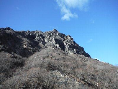 20141213umekoba1