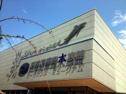 影が出来て読みにくいけど沼津港深海水族館と書いてあります