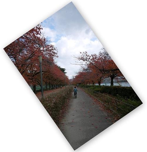 OOSAKATENNMANNGUU-1411-016b.jpg